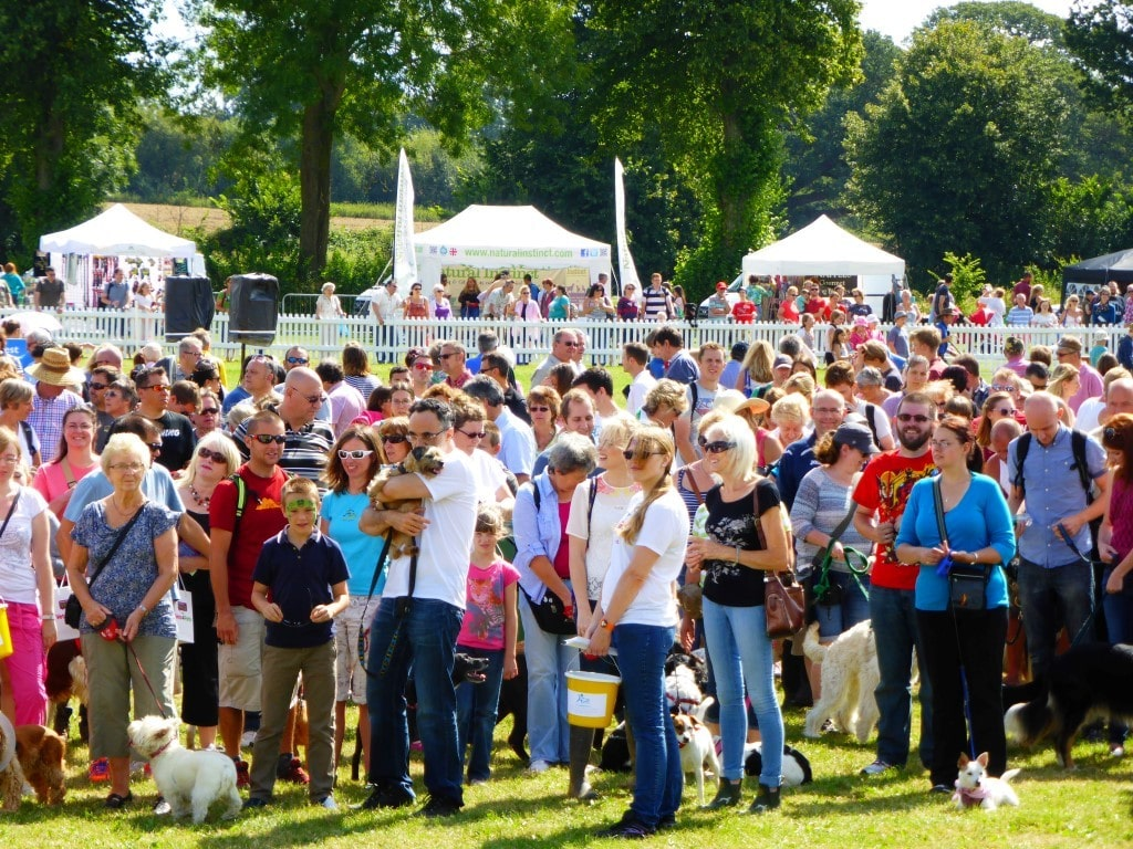 Dog Fest Windsor Park 2016