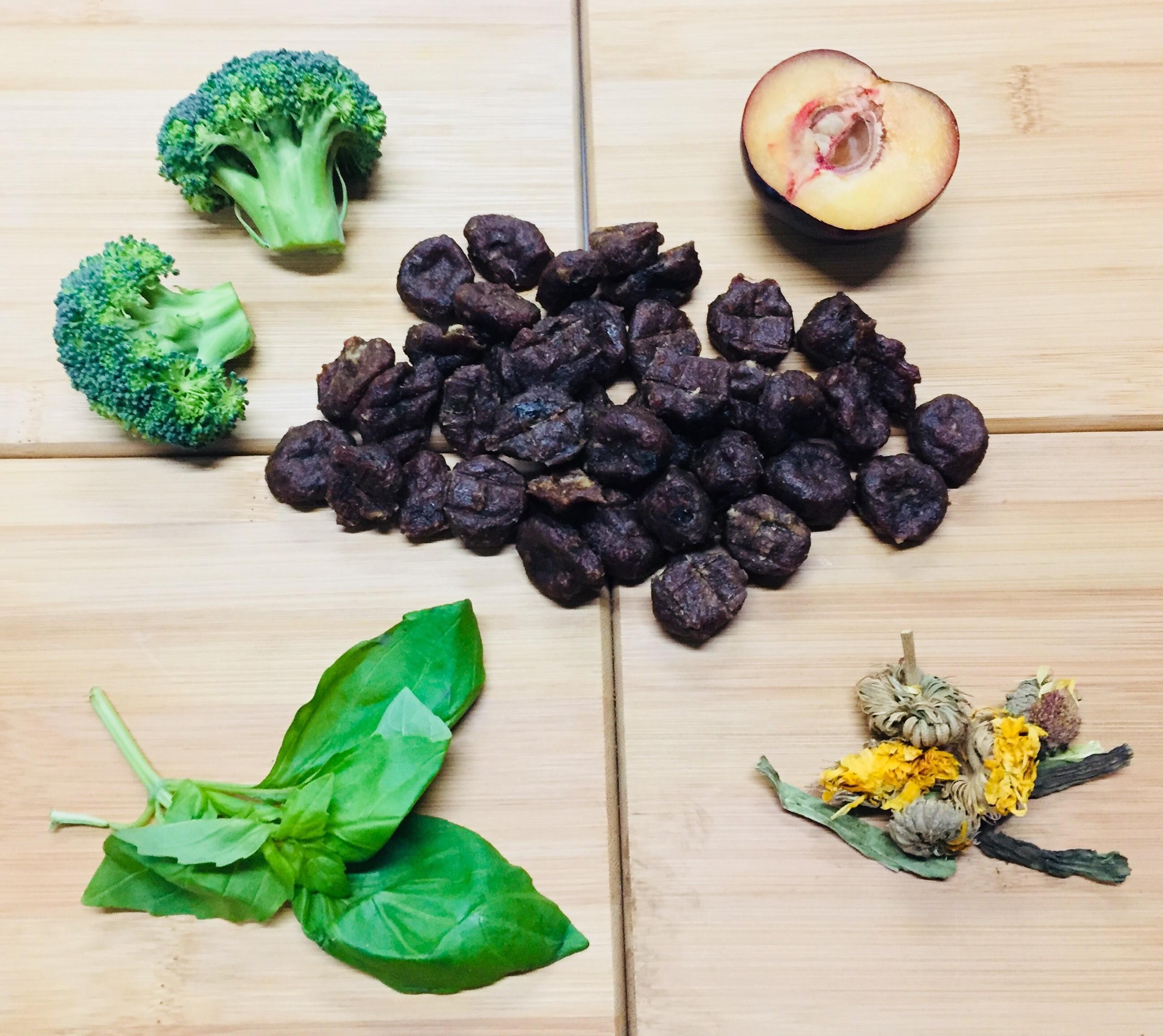 Duck With Plum, Broccoli, Dandelion & Basil – 12 x 100g